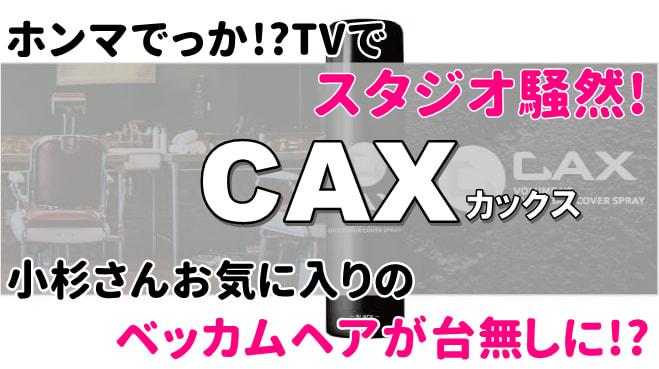ホンマでっかTVのCAXカックス